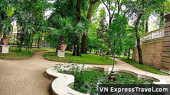 Botanicki Vrt Padove Najstariji Na Svijetu