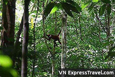 upoznavanje s Costa Ricansima kako prenijeti stvari na sljedeću razinu upoznavanja